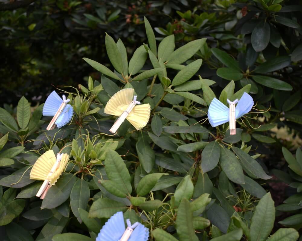 Gotowe motylki z klamerek